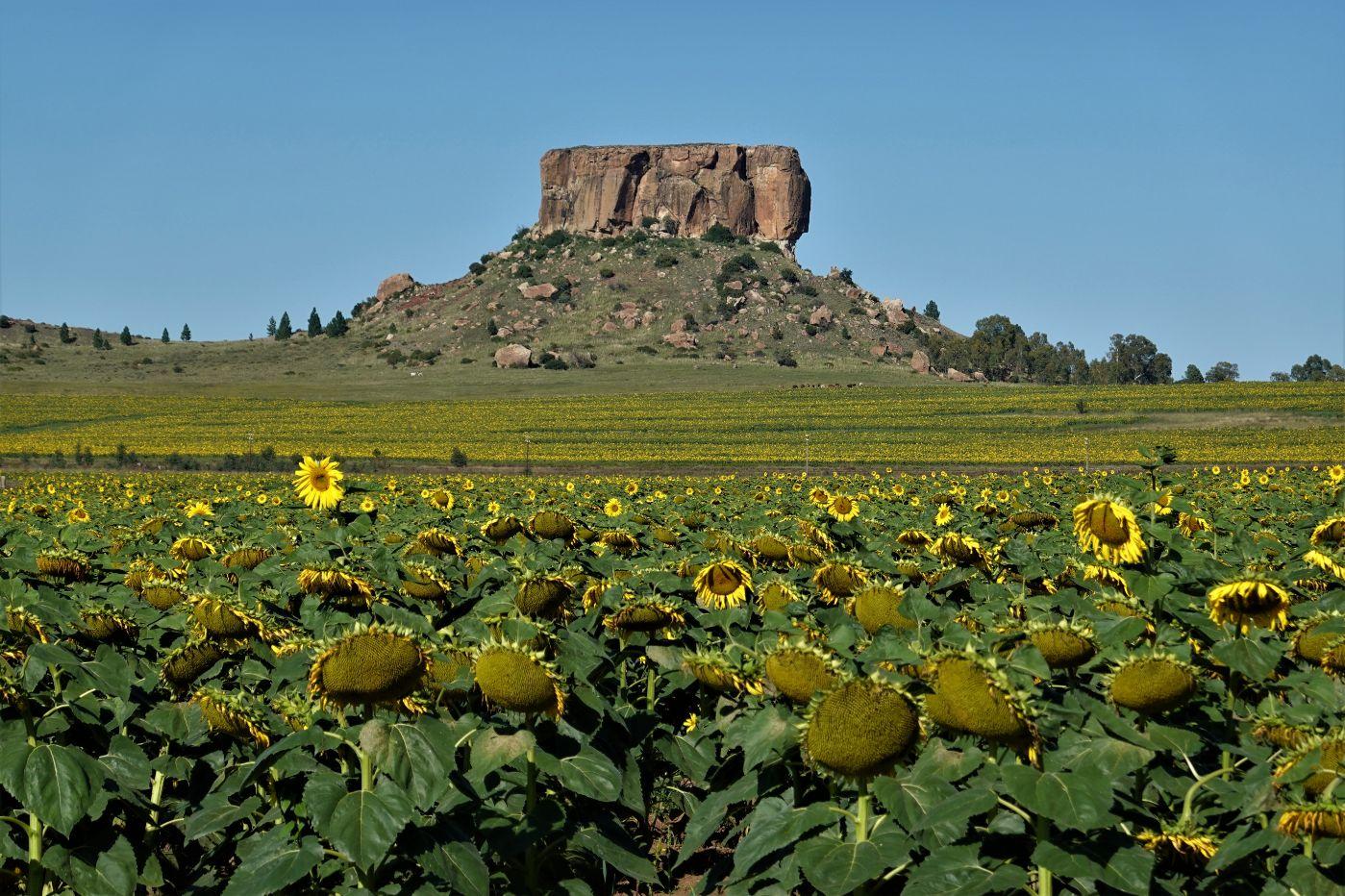 Fascinující krajina okolo Bloemfonteinu