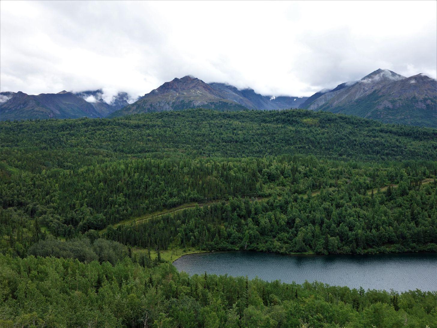 Lesy a řeky jsou na Aljašce téměř stále na obzoru