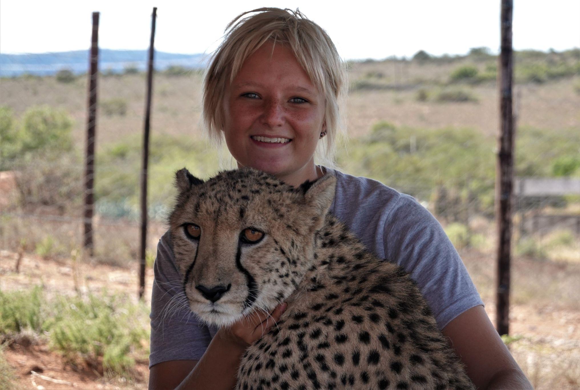 Odpolední siesta s gepardem
