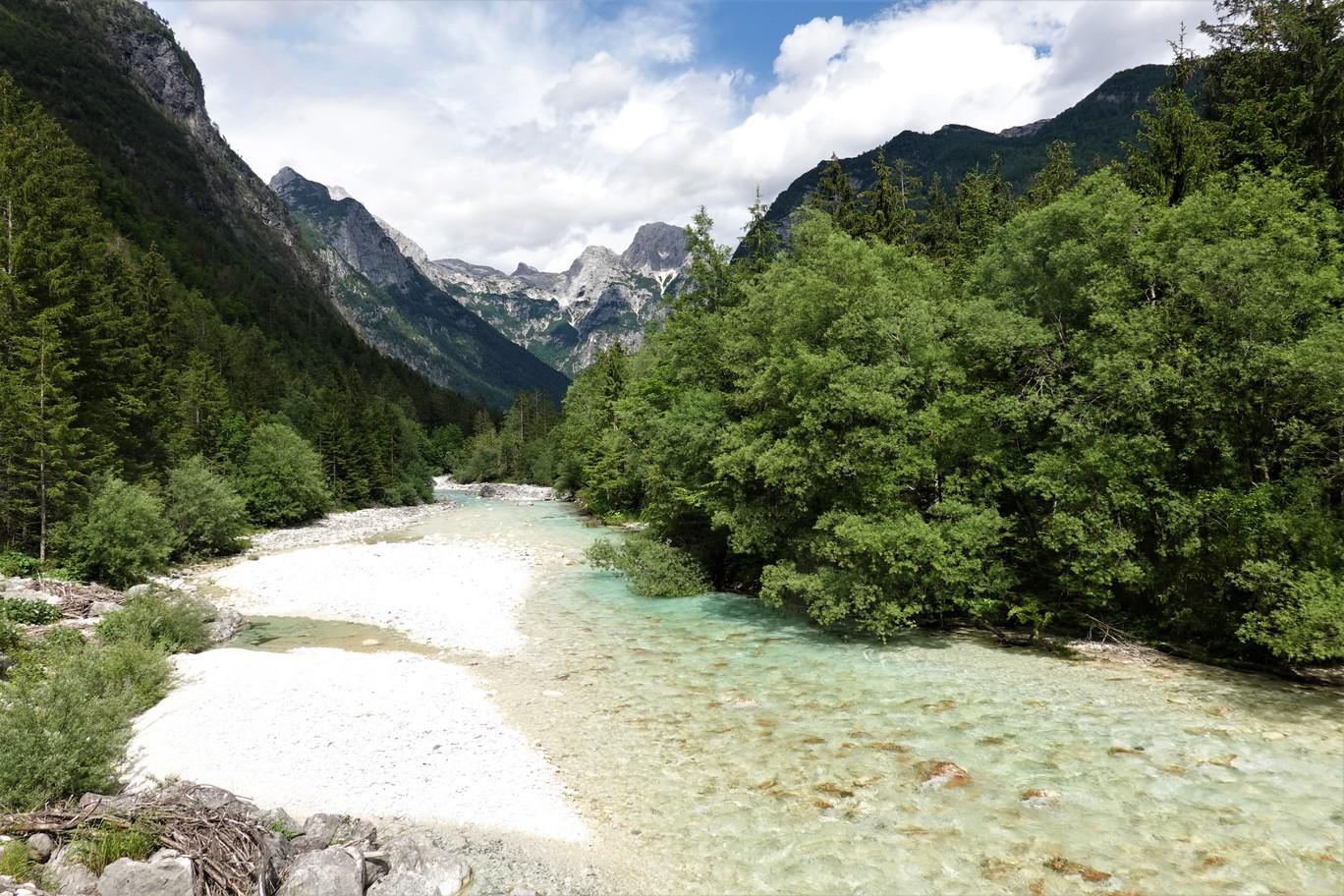 Průzračná řeka Pišnica u Kranjske Gory