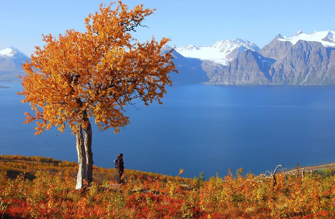 Lyngen Alps 1