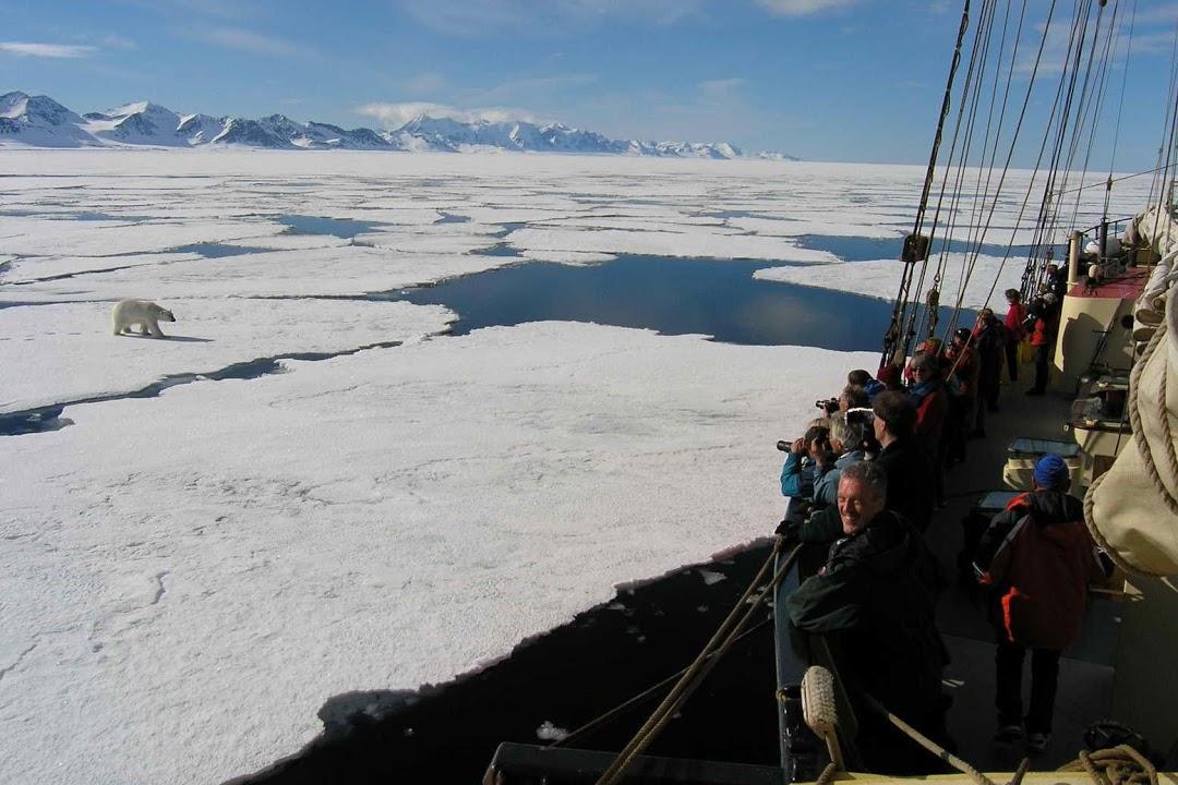 Lední medvěd na dosah z bezpečí paluby