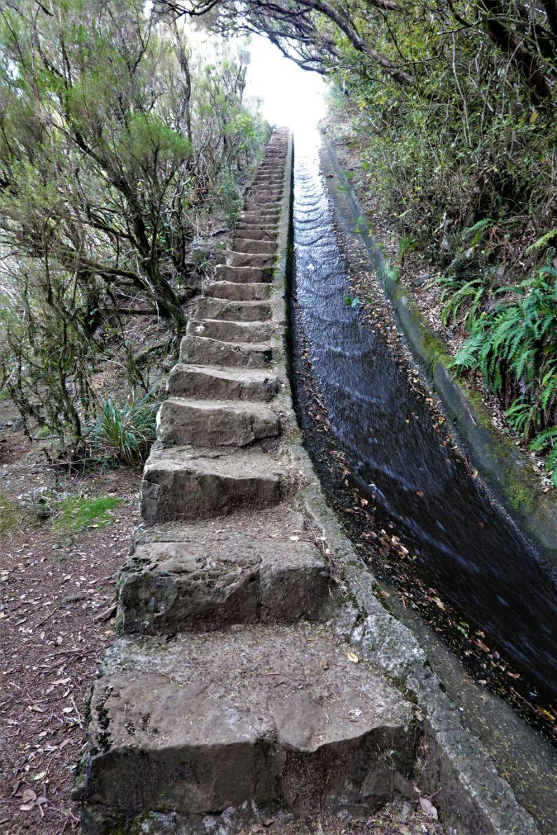 Madeira nabízí stovky kilometrů levad v nejrůznějších provedeních