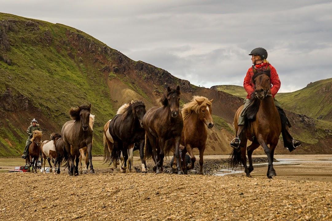 Projížďka na islandských koních