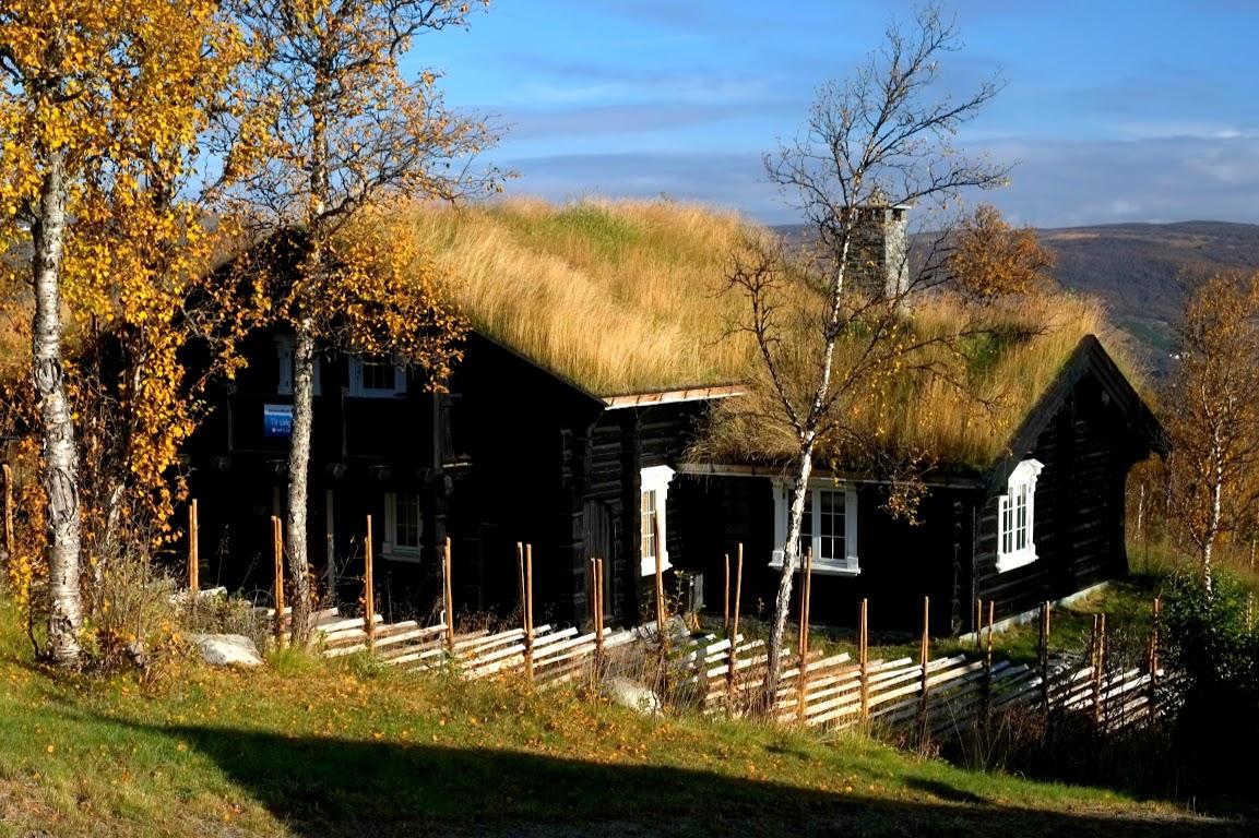 Horská chata se zelenou střechou