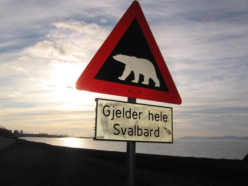Výstraha před ledními medvědy platí pro celý Svalbard
