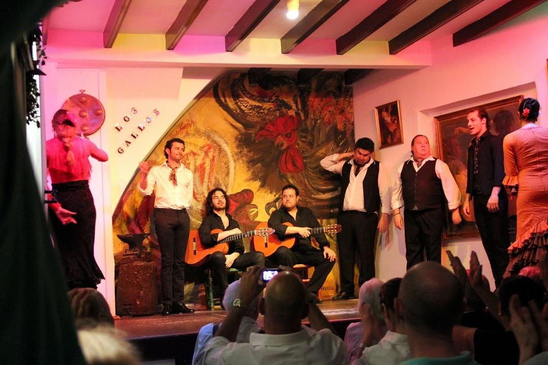 Flamenko - hudba a tanec, představení pro turisty