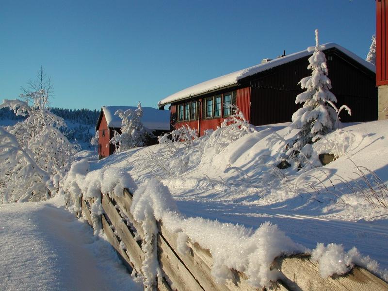 Zimní dovolená v Norsku - chata Austlid