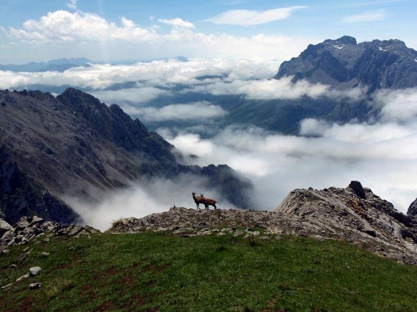 V národním parku Picos de Europa _ Evropské štíty