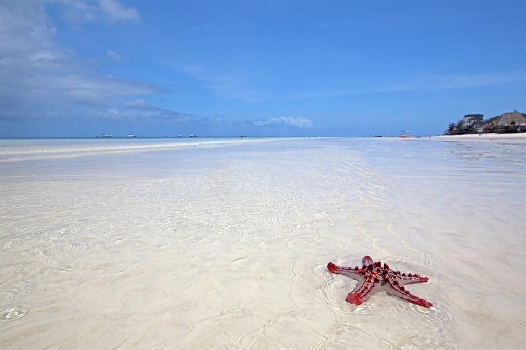 TANZÁNIE - ostrov Zanzibar s výlety 143385