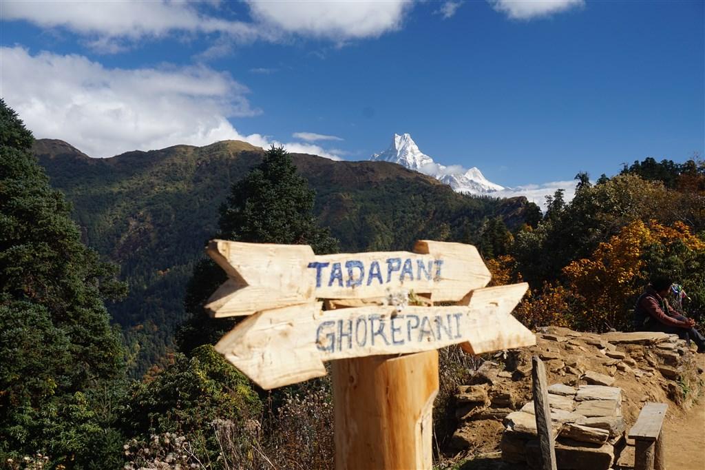 NEPÁL - SVĚT OSMITISÍCOVELs nenáročným okruhem pod Annapurnou (199381)