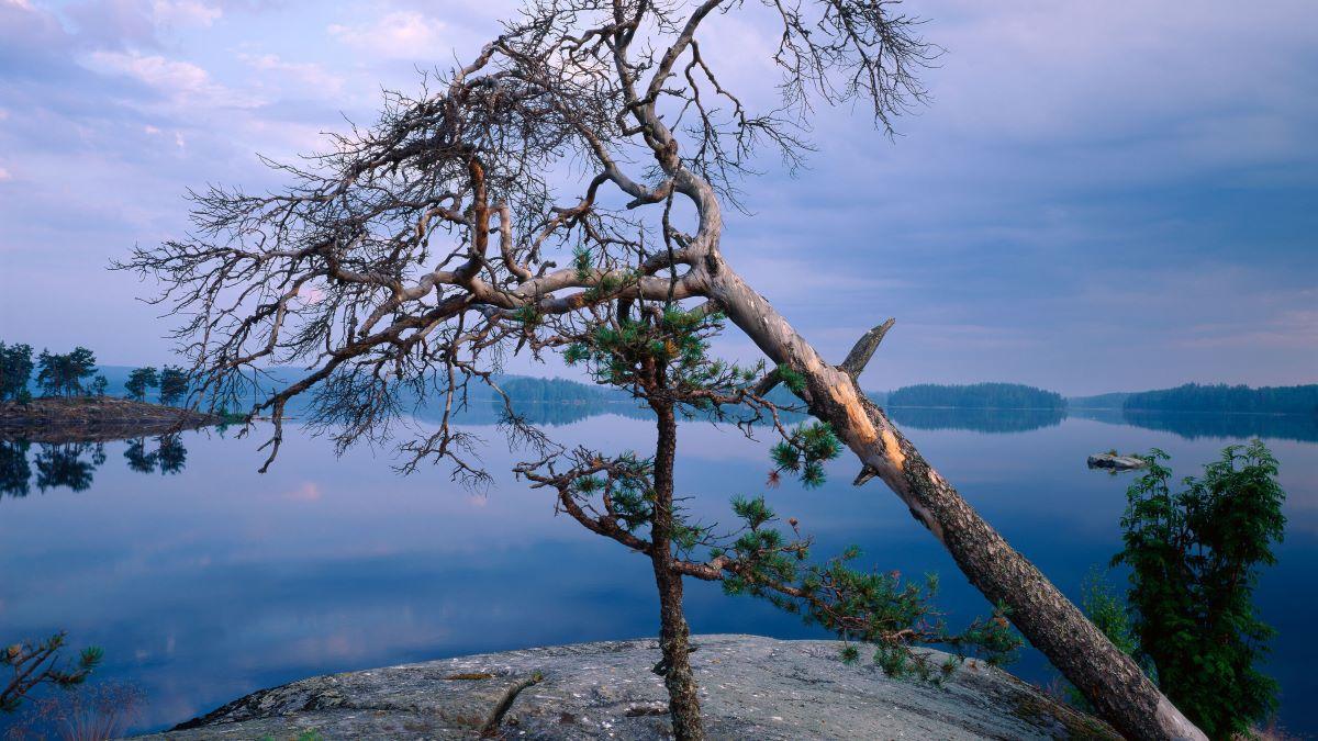 Jezero Saimaa