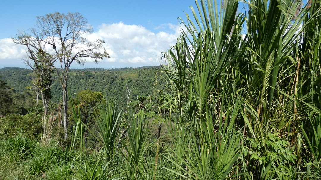 Kostarika - ráj na Zemi 3