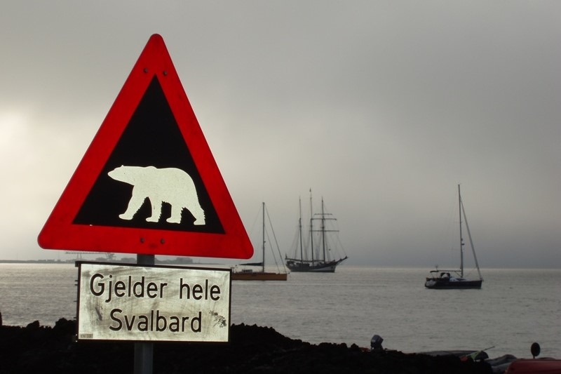 Lední medvěd je obvyklým obyvatelem Špicberk