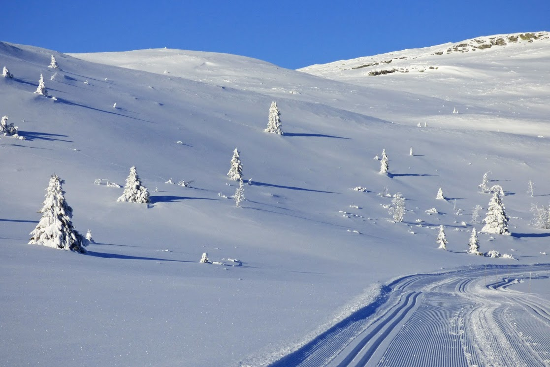 Zasněžený NP Rondane