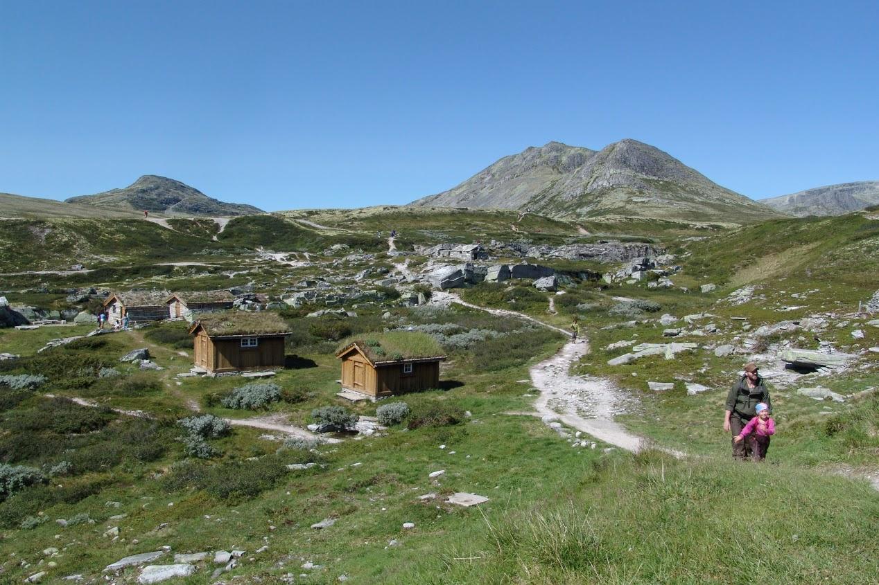 NP Rondane