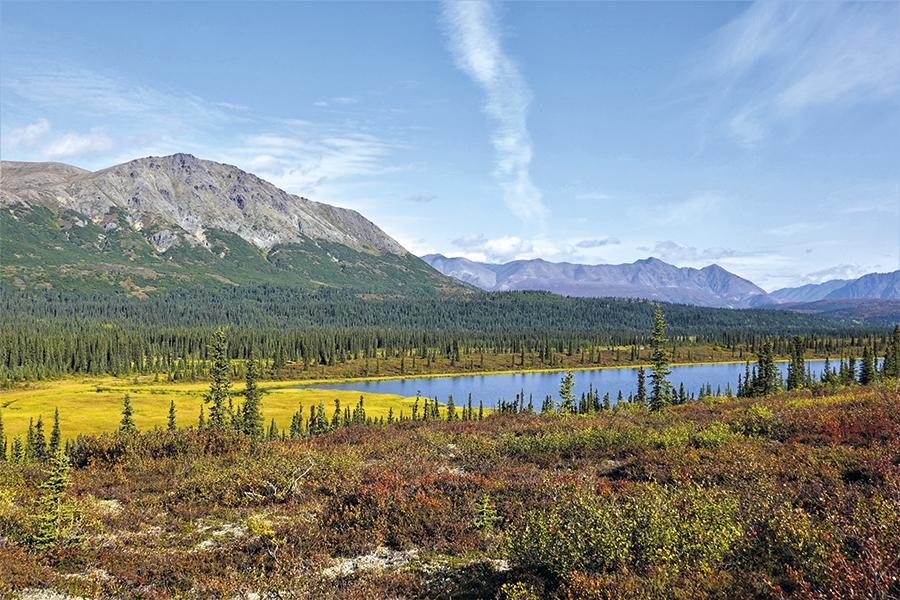 Podzimní barvy Aljašky již koncem srpna