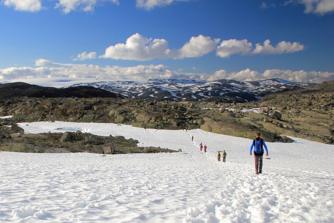 NP Dovrefjell sněhová pole