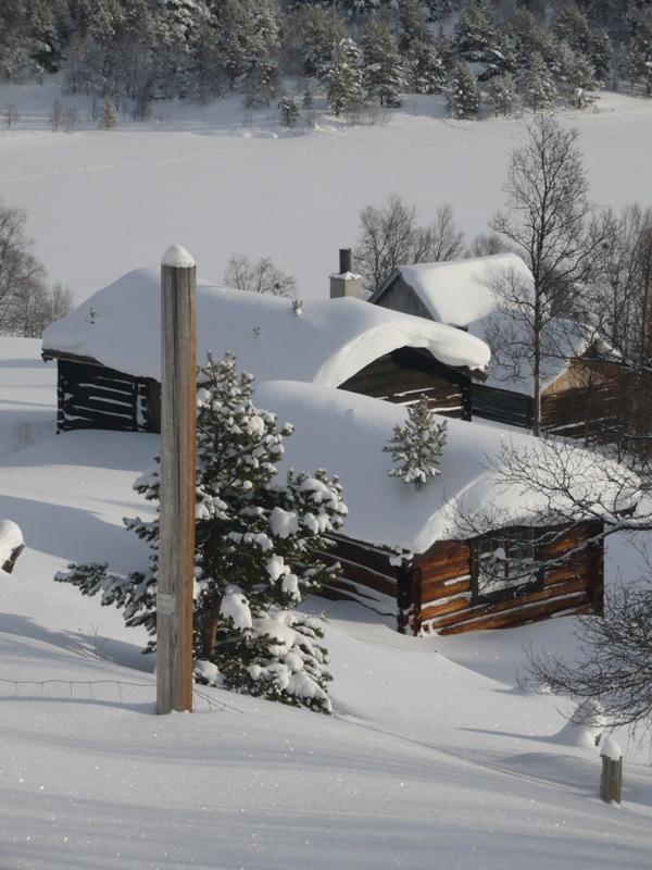 Typická zima ve Skandinávii