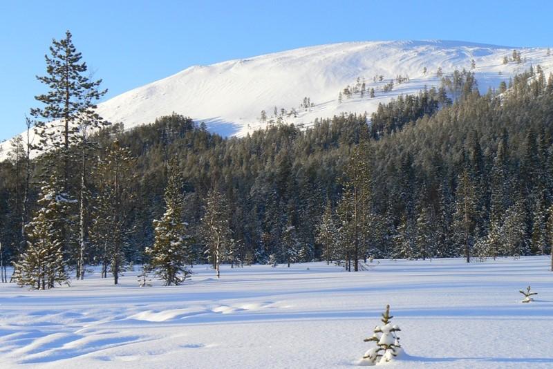 Zimní dovolená v Laponsku