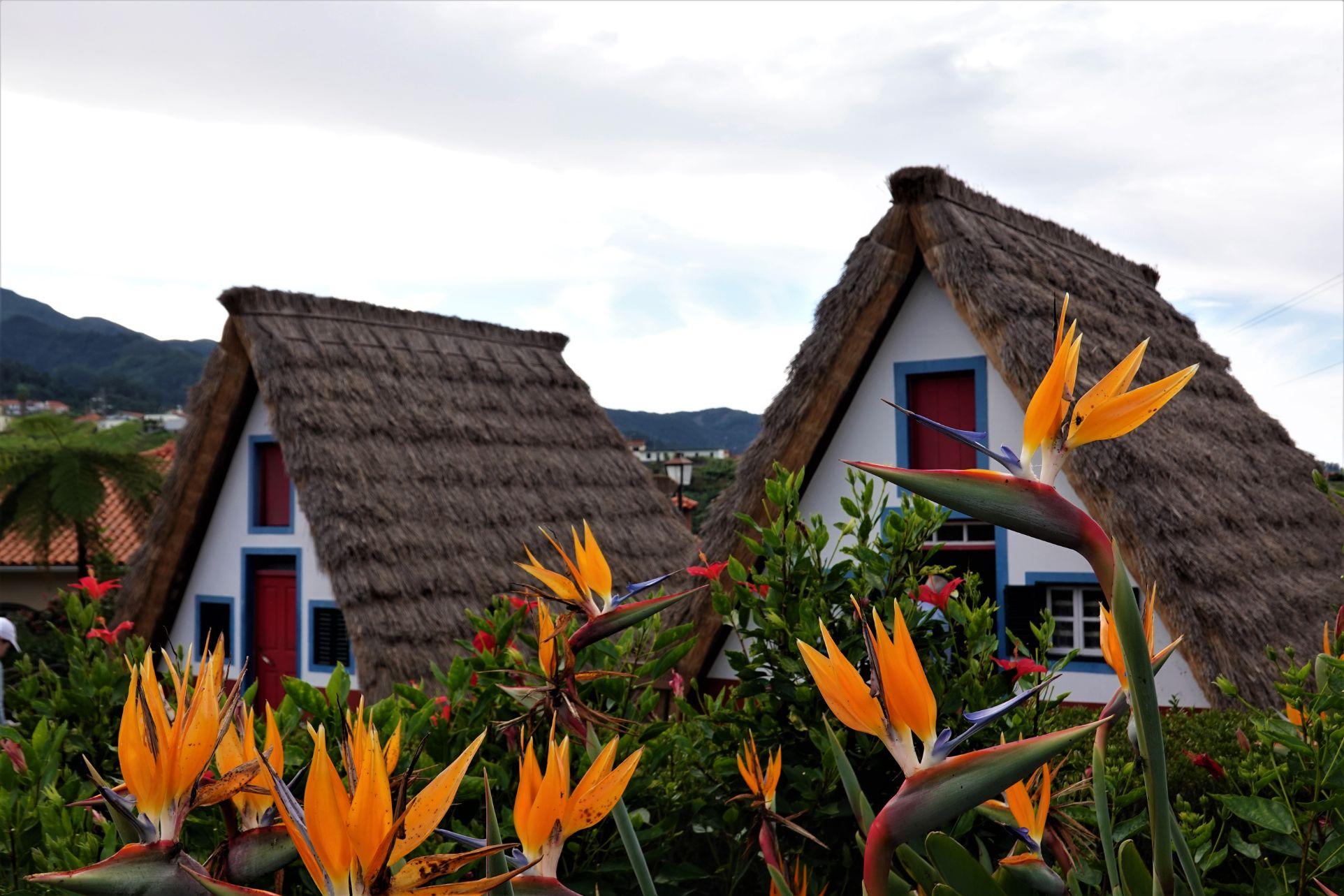 Tradiční trojúhelníkové domky Casas de Colmo v Santaně