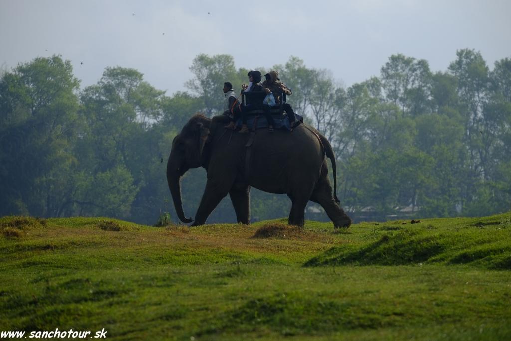 NP Chitwan