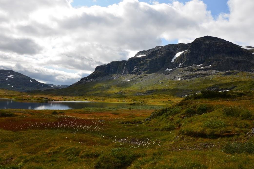 Scenérie NP Hardangervidda