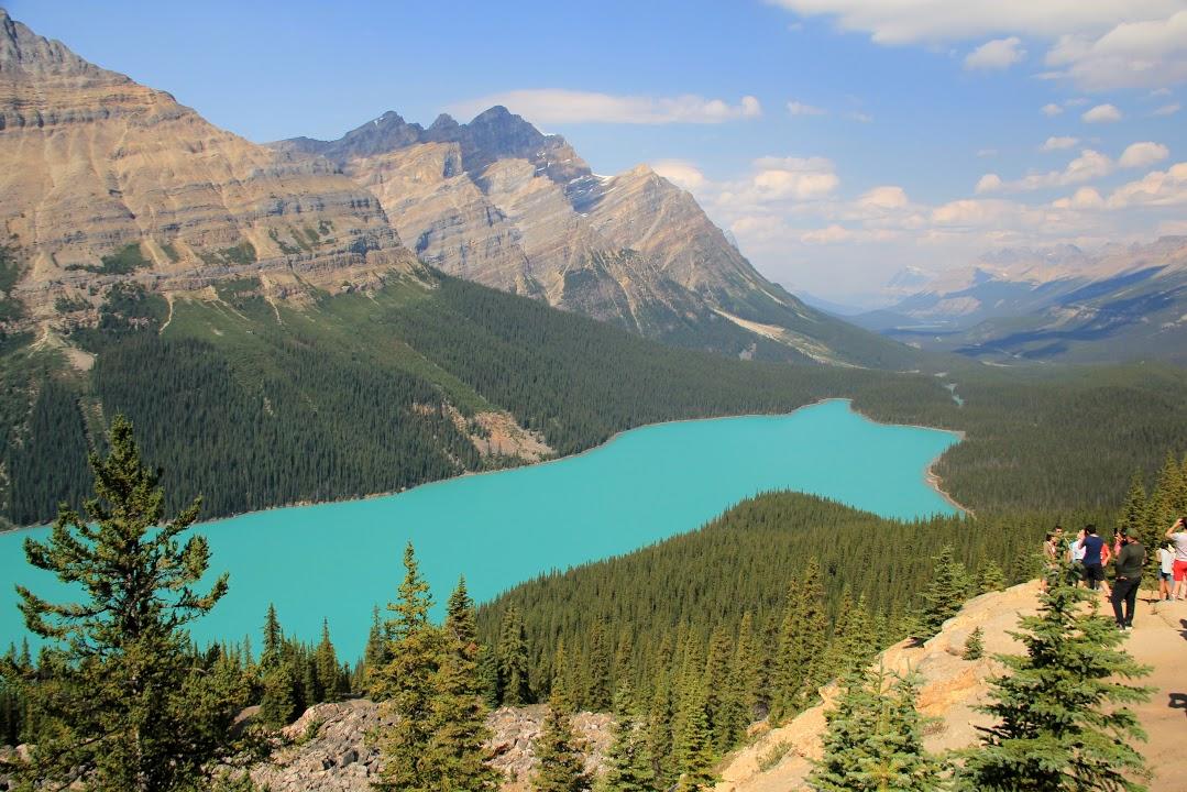 Kanada - západ / Ledovcové jezero Peyto Lake