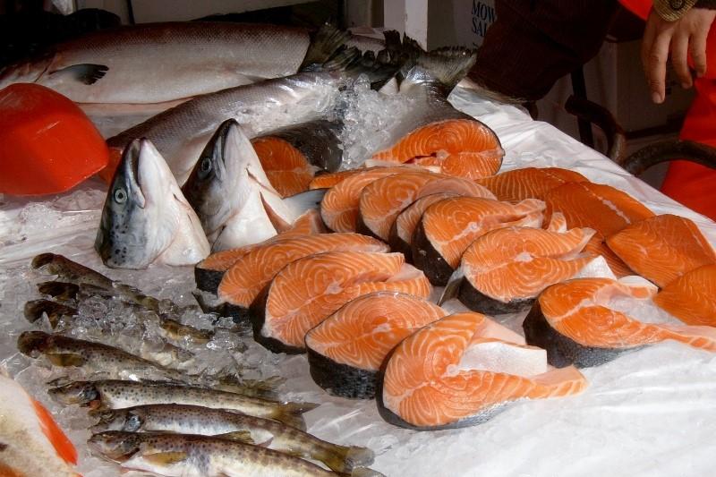 Norsko a ryby k sobě patří