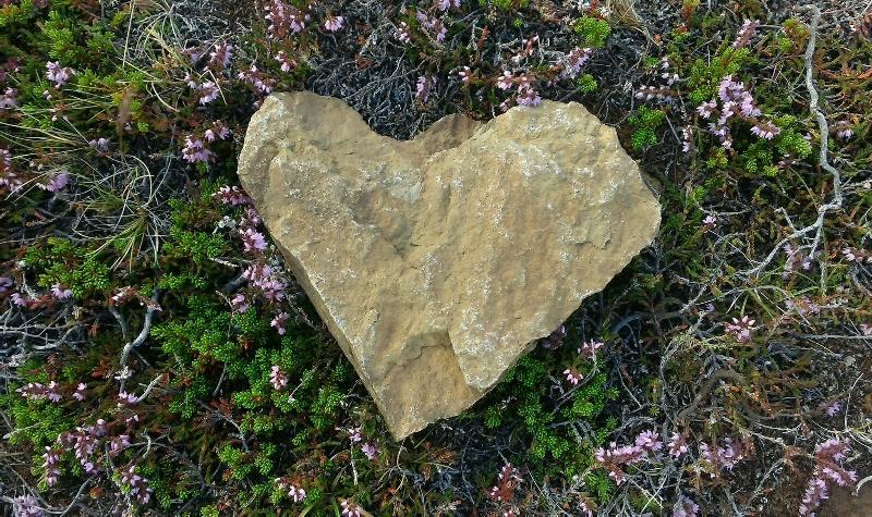 Kamenné srdce - Island, Sára Saudková