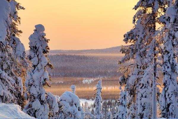 Krajina ve finském NP Iso Syöte