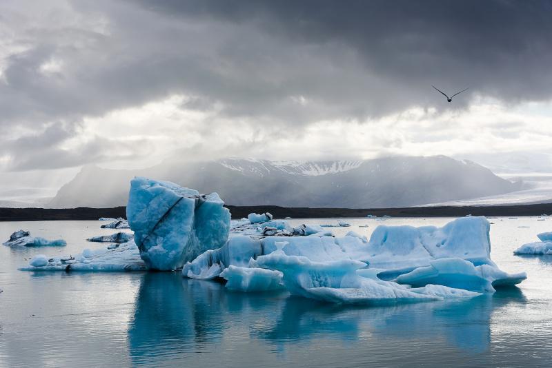 Ledové kry na jezeře Jokulsárlón
