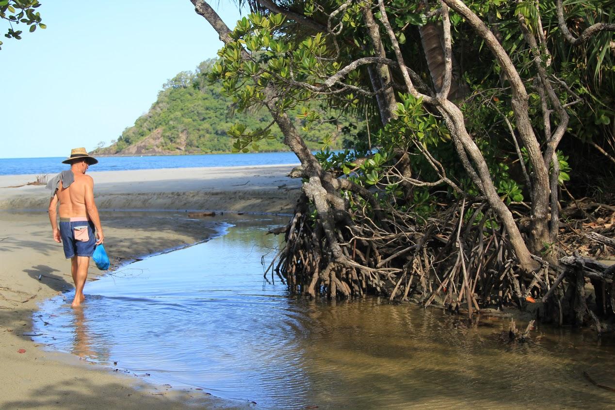 Mangrovy na východním pobřeží