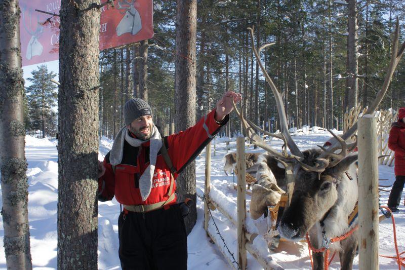 Medvědí brloh - sobi