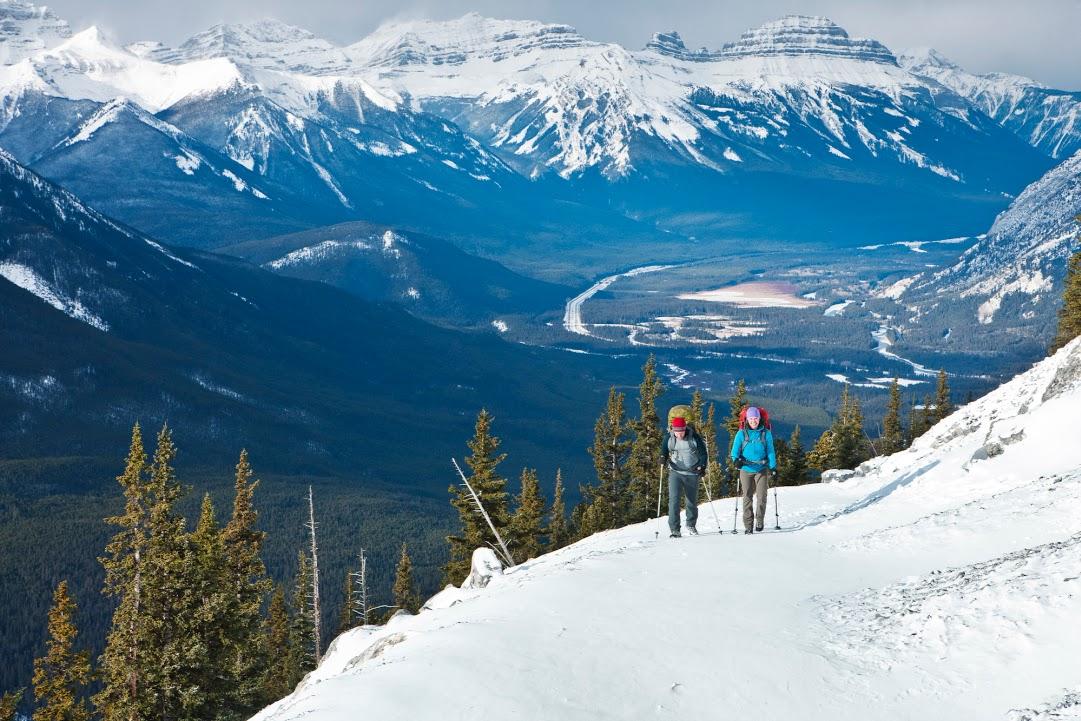 NP Banff
