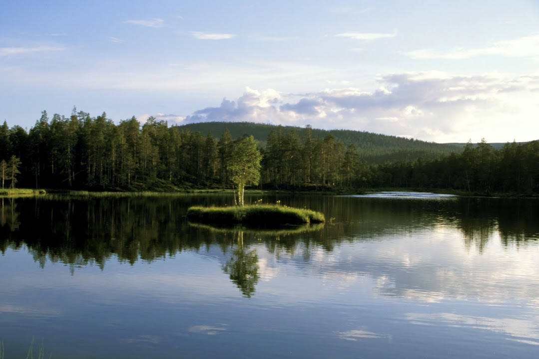 Oblast jezera Inari