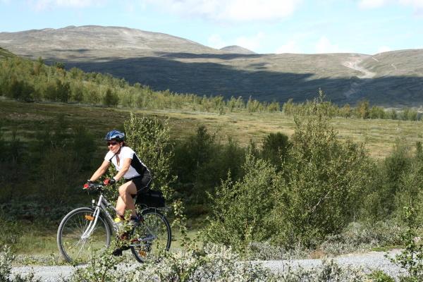 Přijdou si na své i cyklisti- oblast Murudalen pod kopcem Heidal