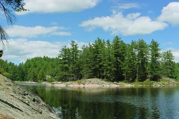 Kanada - západ / Příroda vokolí místa pobytu