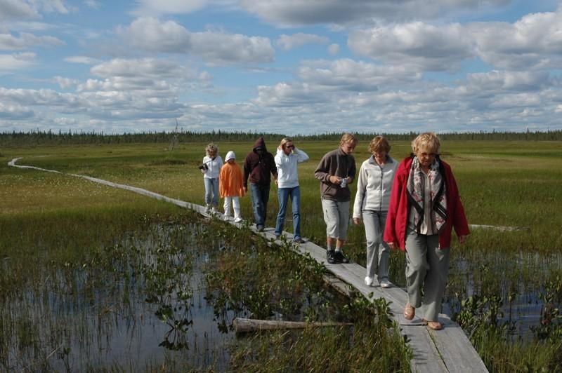 Procházka ve finské přírodě