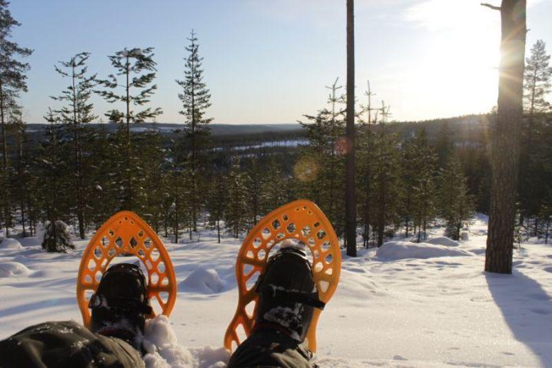 Sněžnice- důležitá výstroj do finské krajiny