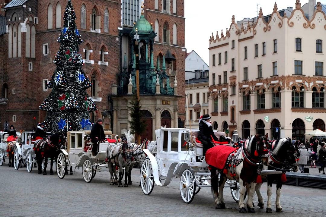 Spřežení před Mariánským kostelem v Krakowě