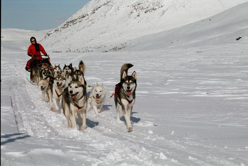 Trek po stezce Kungsleden