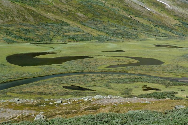 V údolí Rapadalen