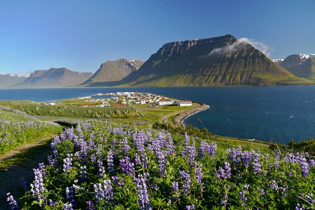Vesnice Flateyri na západních fjordech