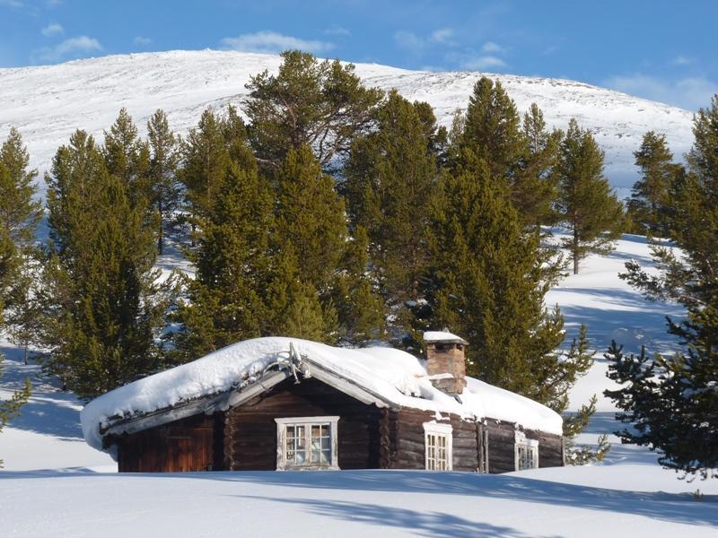 Zasněžená krajina ve Skandinávii