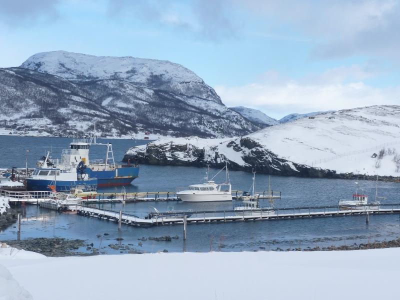 Zima ve Skandinávii